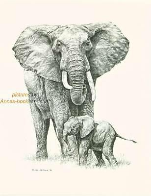 #133 ELEPHANT with BABY wild life art print * Pen & ink drawing * Jan Jellins