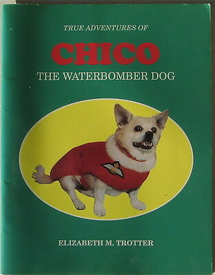 Chihuahua Illustrated Story Chico The Waterbomber Dog Signed