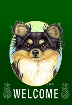 Garden Indoor/Outdoor Welcome Flag (Green) - Longhaired Chihuahua 740471