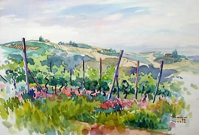 "Trummer August ""Weingärten in Montaione - Toscana"",  Aquarell"