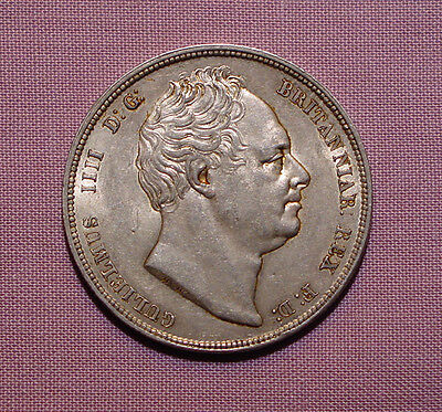 1836 KING WILLIAM IV HALFCROWN - Top Grade Coin With Lustre
