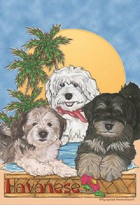 Large Indoor/Outdoor Pipsqueak Flag - Havanese Trio 49503