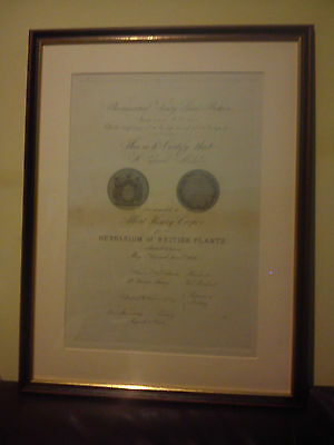 Albert Henry Cooper Pharmaceutical Society Of Great Britain Framed Cert 1876 Vgc
