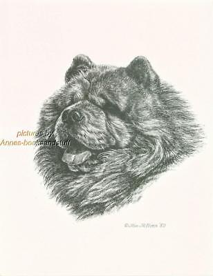 #256 BLACK CHOW CHOW portrait dog art print * Pen and ink drawing by Jan Jellins