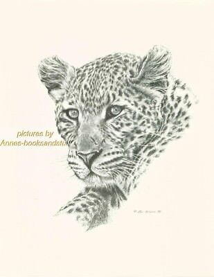 # 96 LEOPARD portrait * wildlife  art print * pen & ink drawing by Jan Jellins