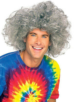 Grey Crazy Bad Hair Day Adult Einstein Wig