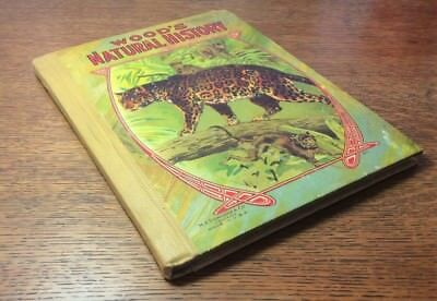 Wood's NATURAL HISTORY Vintage Childrens Book M. A. Donohue & Co