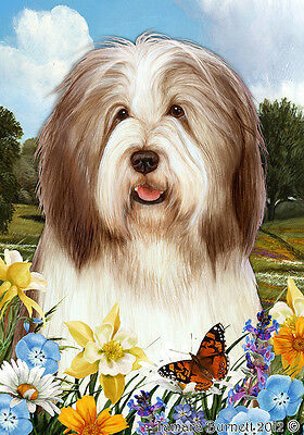 Large Indoor/Outdoor Summer Flag - Brown & White Bearded Collie 18482