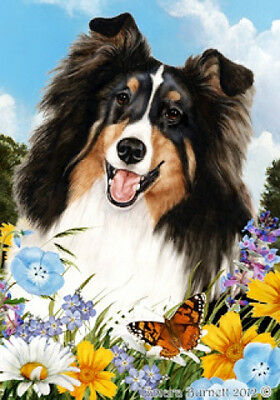 Large Indoor/Outdoor Summer Flag - Tri Shetland Sheepdog Sheltie 18082