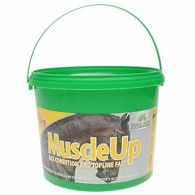 Global Herbs Unisex Muscle Up Supplement Horse Food Muscles