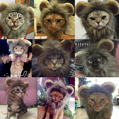 Pet Costume Lion Mane Wig Cute Cat Dress Up Stuffed Plush Cosplay Fancy Clothes