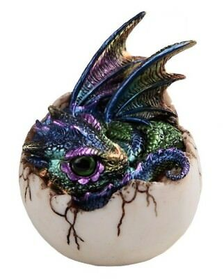 Purple and Green Baby Dragon Hatching from an Egg Fantasy Figurine Hatchling New