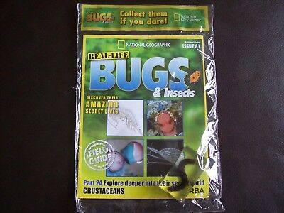 National Geographic Real-life Bugs & Insects magazine Issue 81