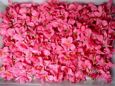 Huge lot of loose silk flowers a massive collection pink hibiscus huge lot of loose silk flowers a massive collection pink hibiscus 41 mightylinksfo Gallery