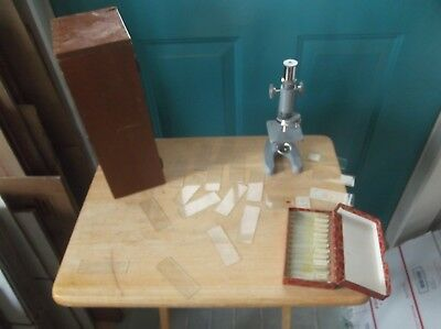 Vintage Atco Microscope with Wooden Box, Clear and Prepared Silk Worm Slides