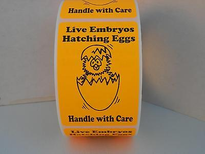 50 cut/folded LIVE EMBRYOS HATCHING EGGS HANDLE WITH CARE fluor orange 2x3 Label