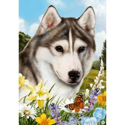 Garden Indoor/Outdoor Summer Flag - Grey & White Siberian Husky 180181