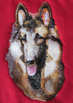 Embroidered Ladies Short-Sleeved T-Shirt - Belgian Tervuren BT3602