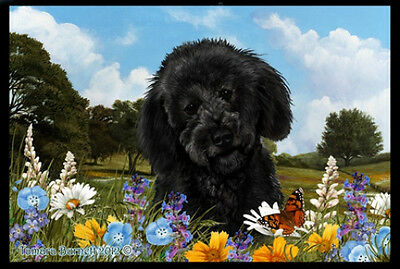 Indoor/Outdoor Summer Floor Mat - Black Labradoodle (TB) 39314