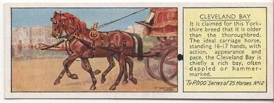 Cleveland Bay Horse Carriage Breed  Yorkshire c80 Y/O Trade Ad Card