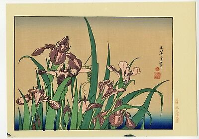 HOKUSAI JAPANESE Chuban Woodblock Print - Irises and Grasshopper