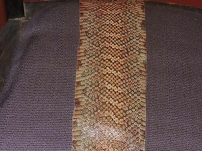 Real Albino S.A. King Snake Skin no holes  inches Reptile Bow Backing inlay