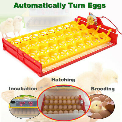 32~60 Egg Automatic Incubator Turner Tray Digital Hatching Temperature Control