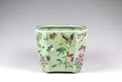Antique 19thC Chinese Qing Famille Rose Canton Butterfly Porcelain Jardiniere