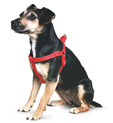 Ancol Reflective Padded Harness Medium / Red