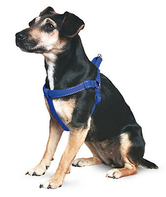 Ancol Reflective Padded Harness Large / Blue