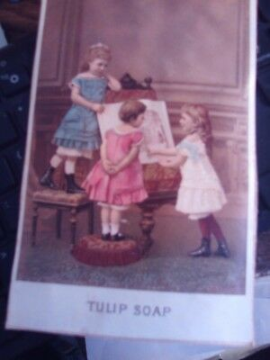 Victorian advertising card.  Tulip Soap 3  children drawing
