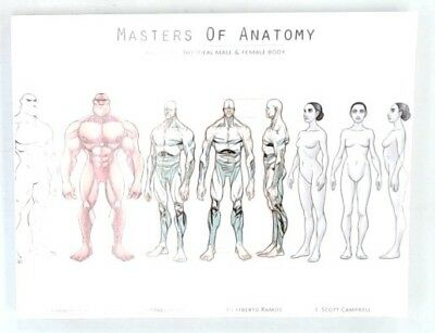 MASTERS OF ANATOMY - BOOK ONE: THE IDEAL MALE & FEMALE BODY Book Comic Art - H31