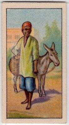 Native African Donkey Boy 80+  Y/O Ad Trade Card