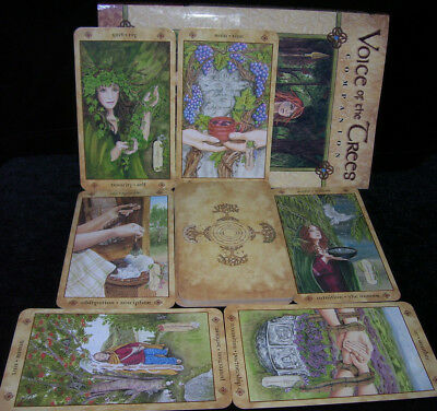Brand New! Voice Of The Trees Oracle Cards & Book Celtic Ogham Mysteries Magic