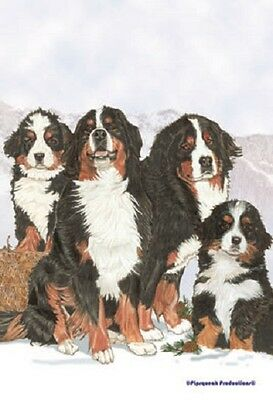 Garden Indoor/Outdoor Pipsqueak Flag - Bernese Mountain Dog Group 495231