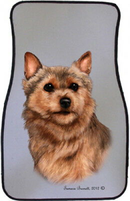 Car Floor Mats Pair - Norwich Terrier 36152