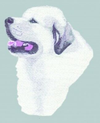 Embroidered Long-Sleeved T-Shirt - Great Pyrenees BT3414  Sizes S - XXL
