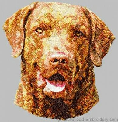 Embroidered Long-Sleeved T-Shirt - Chesapeake Bay Retriever DLE1507