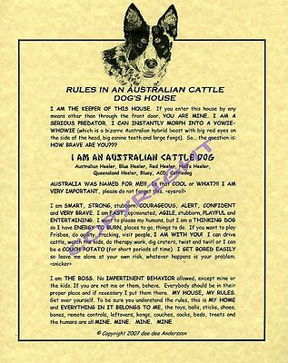 Rules In An Australian Cattle Dog's House