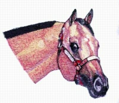 Large Embroidered Zippered Tote - Buckskin Horse BT3995
