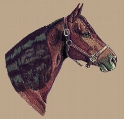Large Embroidered Zippered Tote - Morgan Horse BT2473