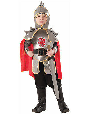 Silver Knight Boys Child Medieval Soldier Halloween Costume