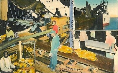 c1930 Unloading Bananas in New Orleans, Louisiana Postcard