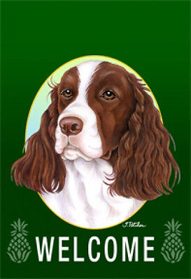 Large Indoor/Outdoor Welcome Flag (Green) - English Springer Spaniel 74031
