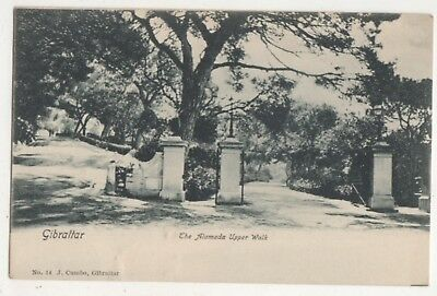 Gibraltar The Alameda Upper Walk Vintage U/B Postcard 715b