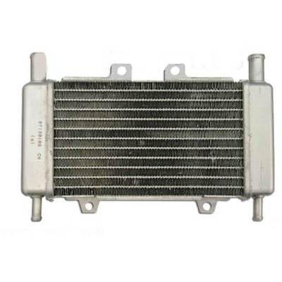 Radiator Gilera Runner Dna 50 Radiator Scooter Piaggio 50 Lc Liquid