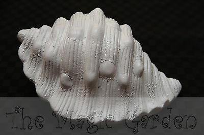 Large shell seaside garden ornament cement plaster latex moulds/molds