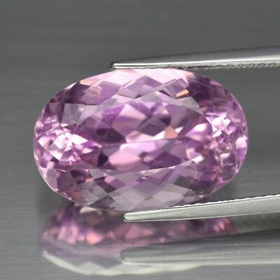 Big Size! 11.39ct 16.8x11.3mm Oval Natural Untreated Light Pink Kunzite