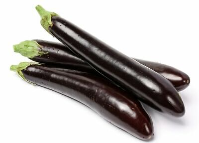 Long Purple Eggplant 50 x seeds Heirloom Garden Vegetable
