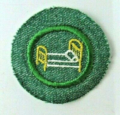 Girl Scout 1963-80 Cadette ANIMAL KINGDOM INSECT BADGE Mayfly Bug Patch CHOOSE